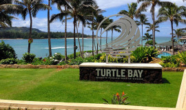 Turtle-bay-beach club/ Flying Dove Tours