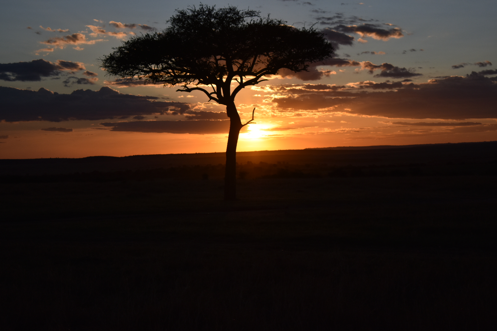 kenya holiday safari package