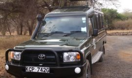 meru national park safari
